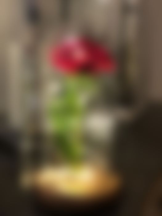 "3D Photo!   For you! ""Enchanted Rose Flower Lamp""  For you!    www.inspireuplift.com ..."