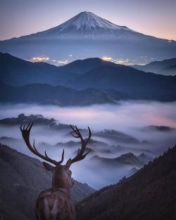 Dream view of Fuji mountains!