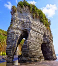 Elephant Rock in New Zealand.