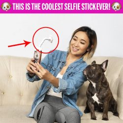 Pet Selfie Stick!! 🐶