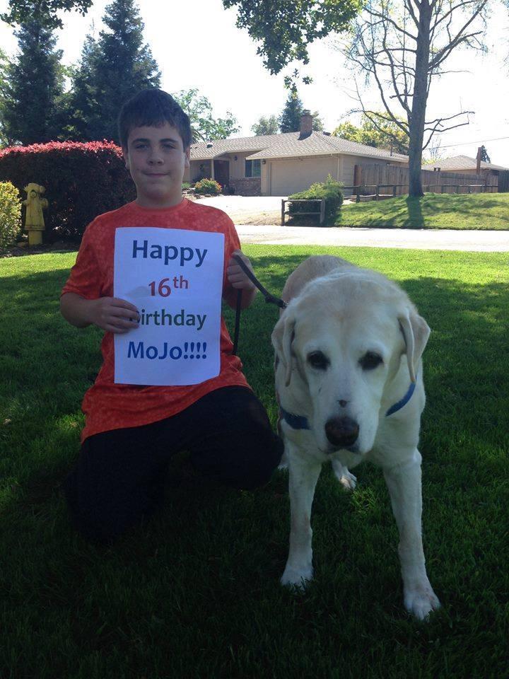 """Please help us wish MoJo the happiest 16th birthday!!! Go MoJo!""  Wow 16! Happy Bir ..."