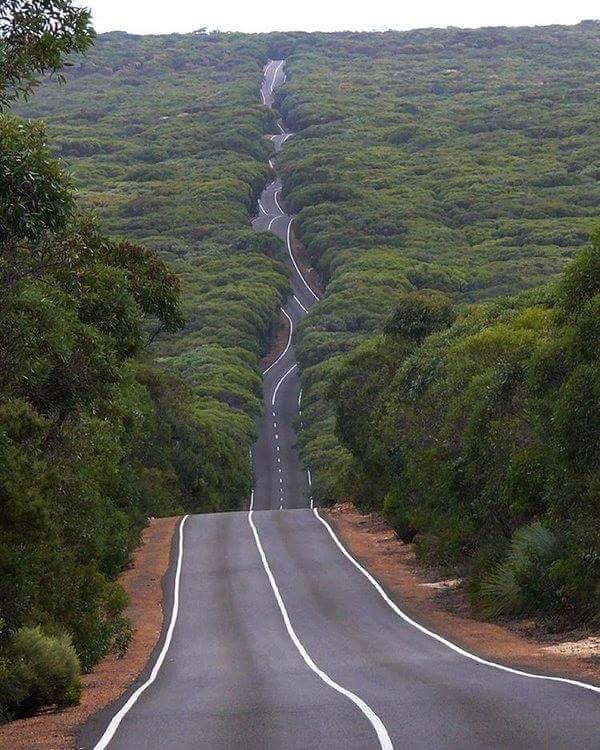 Road on Kangaroo Island, Australia :o