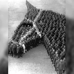 Soldiers paying tribute to 8 million horses, donkeys and mules that died during WW1. (1918)