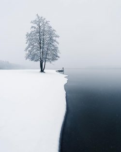 The moment of the first snow, Finland.