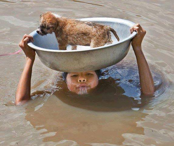 This kind boy is saving this stray puppy from flood..  One word for this boy please.
