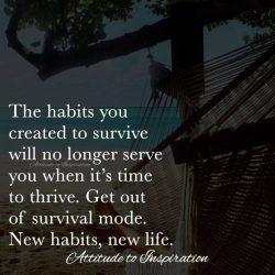 <3 New habits, new life …