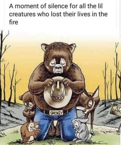 A moment of silence for all the lil creature who lost their lives in the fire.
