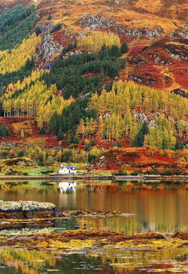 Autumn in the Scottish highlands! :o