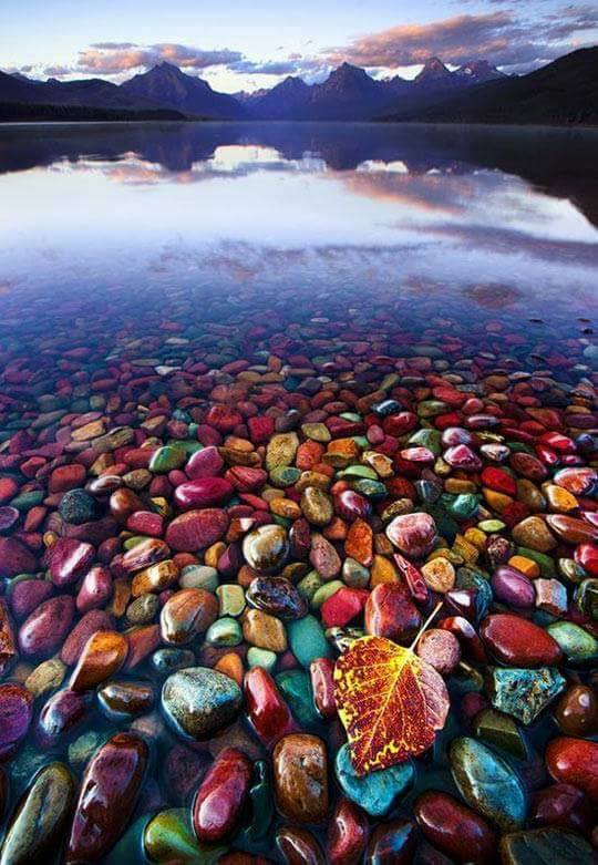 Beautiful Pebble Shore Lake In Glacier National Park, Montana :o