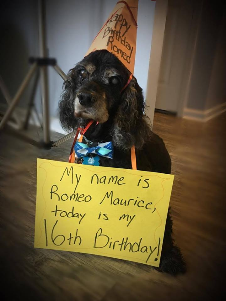 Happy 16th Birthday to Romeo Maurice! We wish you many more!