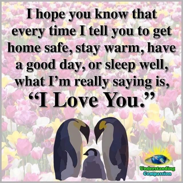 I Hope You Know ❤️