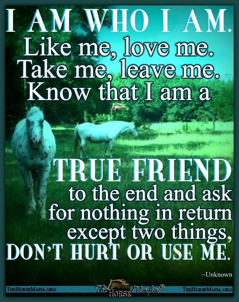 I am who I am.  The Horse Mafia®  Cowgirl Charity and The Horse Mafia®