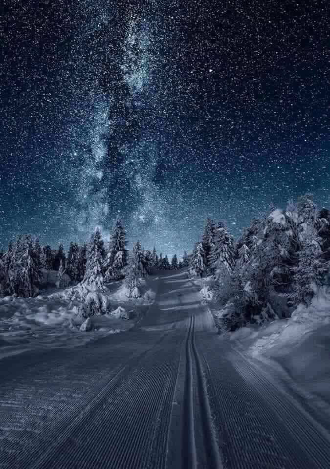 Milky way Norway…. Breathtaking! <3