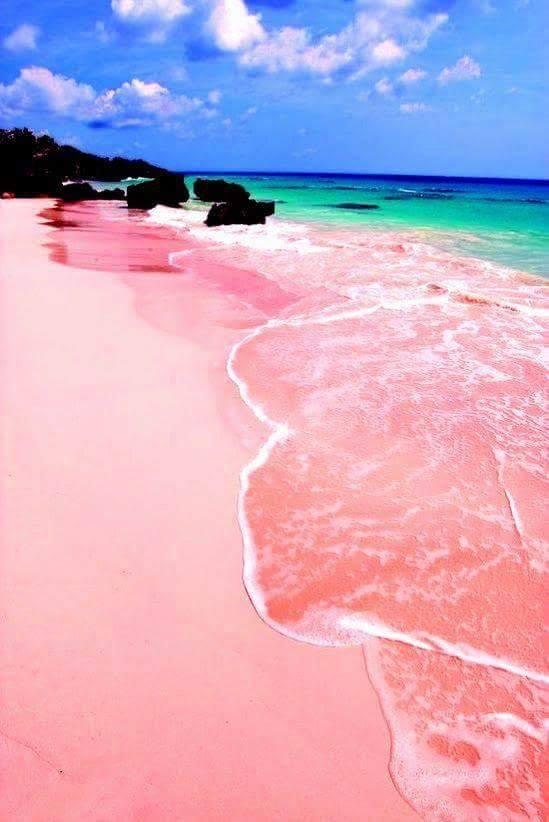 Pink Sand Beach in Bermuda… Wow!! :o