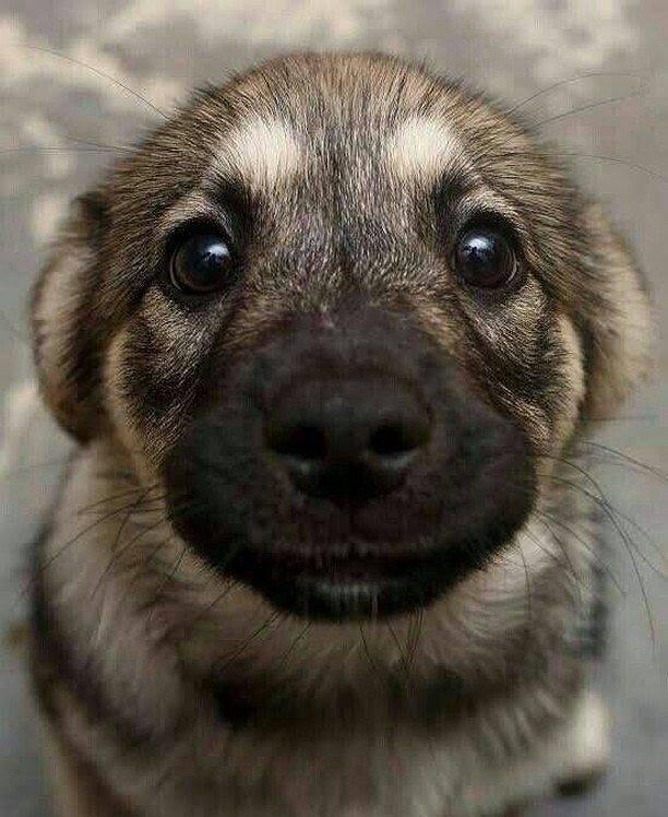 """""""Am I cute?"""" :)"""