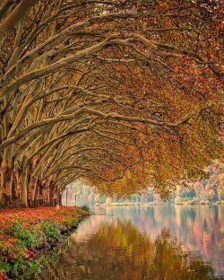 Autumn reflections  Baldeneysee, Essen, Germany.