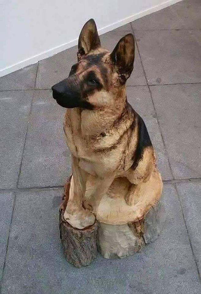 Dog tree stump carving! :o