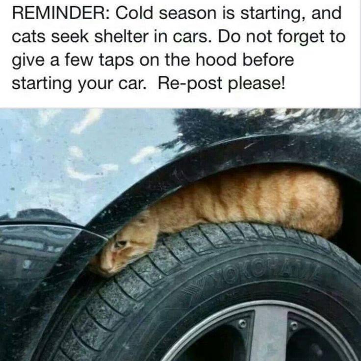 Good advice!   Had to share! (y)
