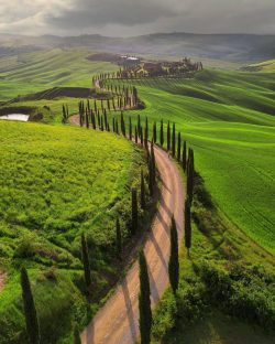 Peaceful morning Tuscany, Italy.