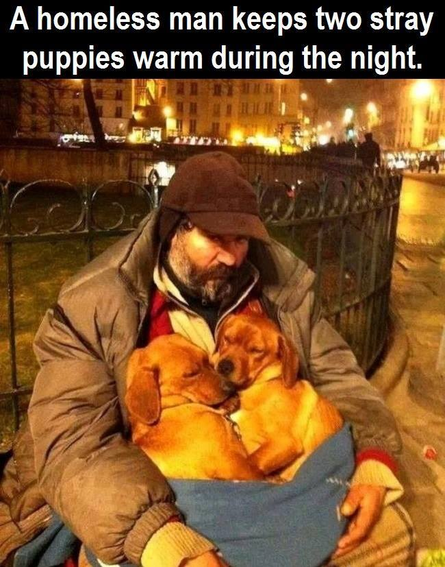 So incredibly touching, man's best friend and companion…